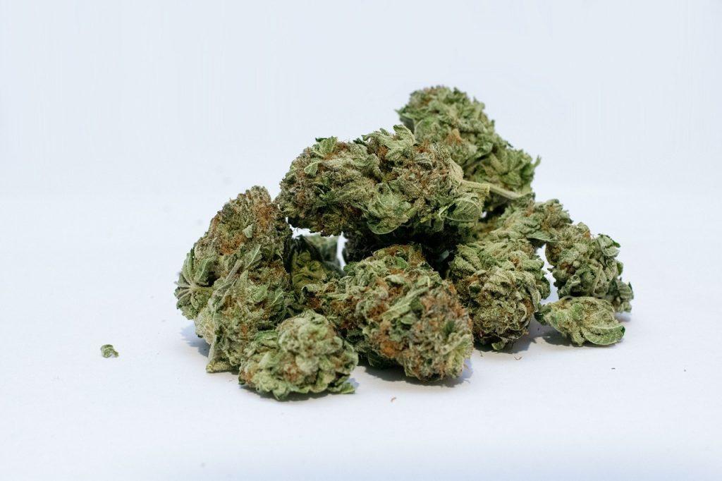 marijuana form